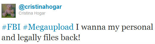 Megaupload Takedown: The Real Meaning file back1