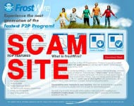 picture of a scam website