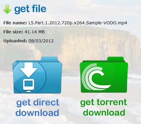 screenshot of the netkups download options, torrent or direct download