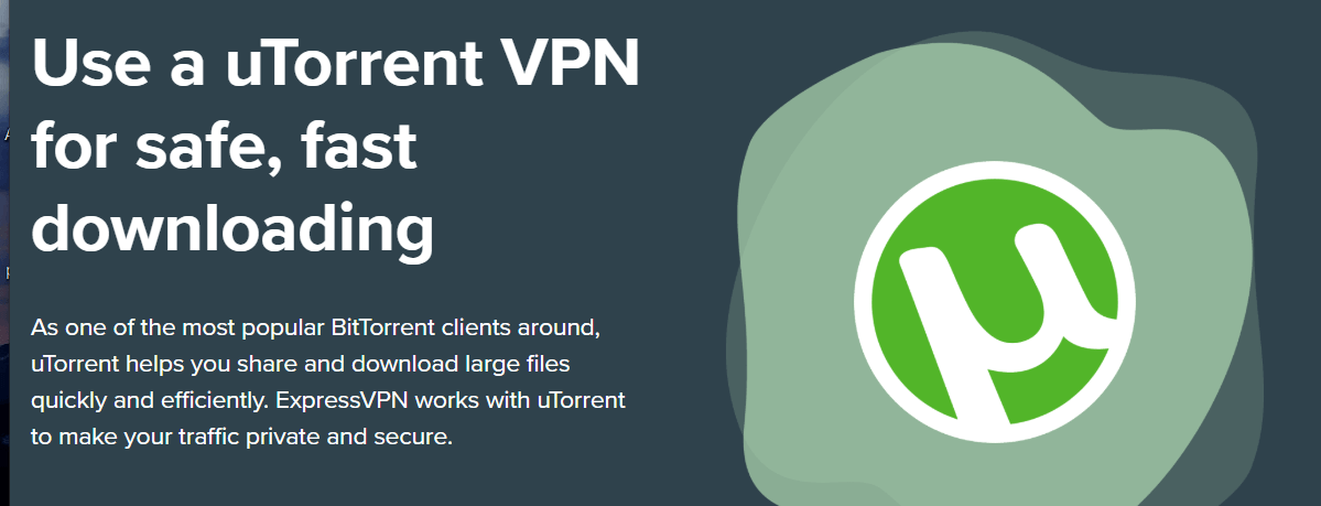 a vpn to download torrents